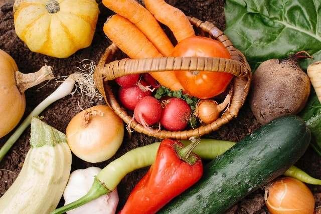 「髪に良い冬の食べ物」の画像検索結果